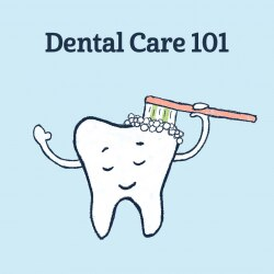 What you need to know about dental care
