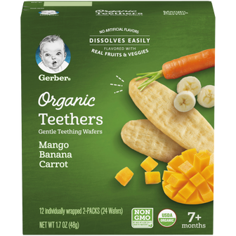 Box of Gerber Mango Banana Carrot Organic Teethers for baby
